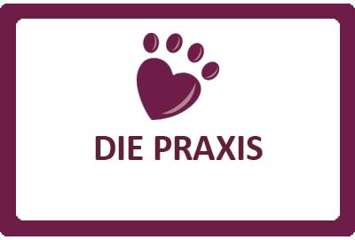 Auswahl Leistungen Tierarztpraxis Praterstern